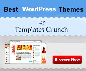 Best_wordpress_Themes